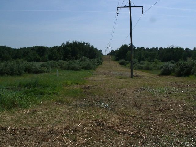 Cleared Electric Line Access