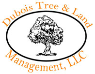 Dubois Tree & Land Management, LLC